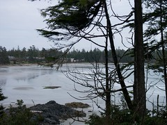 Middle Beach (Sam Beebe, Ecotrust) Tags: ocean canada pacific britishcolumbia tofino clayoquotsound middlebeach middlebeachlodge