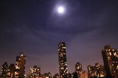 IMG_7164 (aveoree) Tags: newyork america 美国 纽约