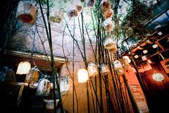 like a dream (cathycracks) Tags: street travel light building tree lights restaurant alley lotus branches wideangle korea bamboo seoul lantern southkorea insadong lotuslantern canon1022mm insadongdistrict canonefs1020mm goodfishiesc