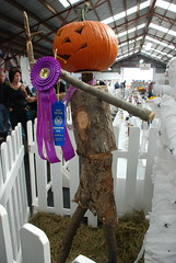 The winning scarecrow