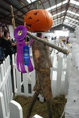 The winning scarecrow