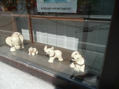 (lilipop1000) Tags: elephant 2008 courmayeur