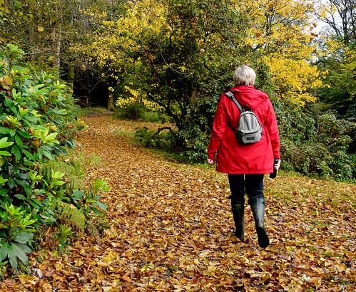 Walking in Blair