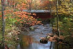 2008_10_13_brookline-nh_20 (dsearls) Tags: footbridge coveredbridge brookline bikeway brooklinenh potanipo nissitissit anthropocene nissitissitriver granitetownrailtrail 20081013 potanipopond
