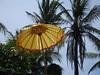 DSC08267 (Mirko Prehn) Tags: bali indonesien candidasa andreaundmirko