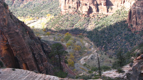11.22.08 Zion NP East Rim Trail