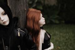 Ashlar & Rowan 55 - DOT Lahoo & Shall (-Poison Girl-) Tags: dotshall shall dodshall dotlahoo lahoo dodlahoo rowan ashlar dreamofdoll doll bjd balljointeddoll sd superdollfie dollfie gothic nature tree