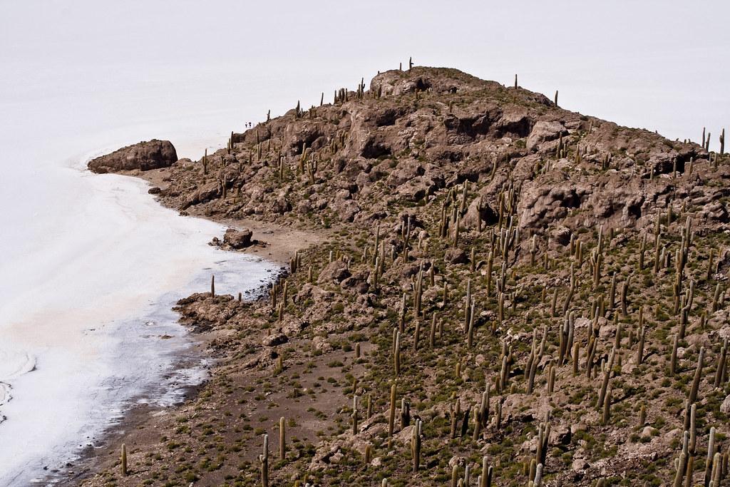 Isla del Pescado (Salar de Uyuni, Bolivia)