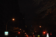NYC_Nov08_0733 (Herve Boinay) Tags: nyc newyorkcity travel usa ny newyork bus night america us tour unitedstates centralpark harlem manhattan 5thavenue uptown upperwestside westside eastside uppereastside 5thave