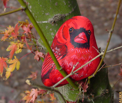 Hand painted rock. Red cardinal