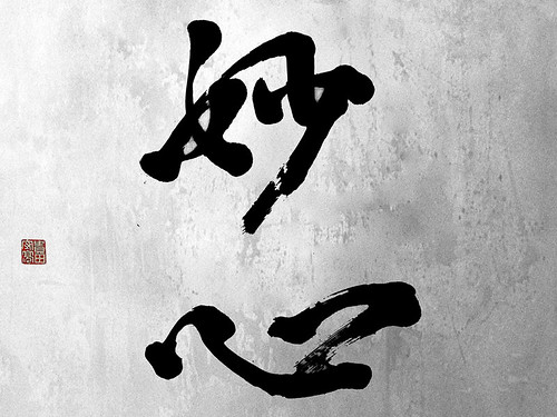"""zen_graphia_60 • <a style=""""font-size:0.8em;"""" href=""""http://www.flickr.com/photos/30735181@N00/3118412548/"""" target=""""_blank"""">View on Flickr</a>"""
