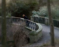 Peaceful - Bridge at Aden Park Mintlaw (w11buc) Tags: bridge trees scotland aberdeenshire peaceful mintlaw 5photosaday olddeer adenpark