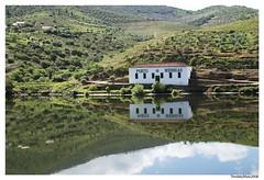 Two Messias (nuno tendais) Tags: portugal douro comboio riodouro vinhas fozcoa encostas ferias pocinhoregua