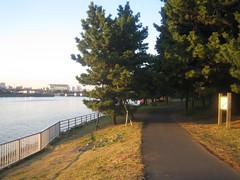 Nice jogging path