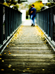 A walk to remember (Dustin Diaz) Tags: bridge fall leaves google nikon dof bokeh walk nikkor googleplex 43 featured 85mmf14d hbw dustindiazcom d700 tenof08 dedfolio