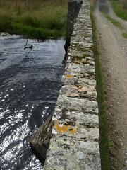 DSCN1841 (Zingraff) Tags: scotland glen dunkeld quaich