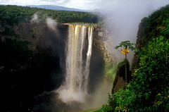Guyana (richard.mcmanus.) Tags: waterfall guyana mcmanus kaieteur blueribbonwinner natureall photowild flickrdiamond naturelovely vosplusbellesphotos worldnatureclose