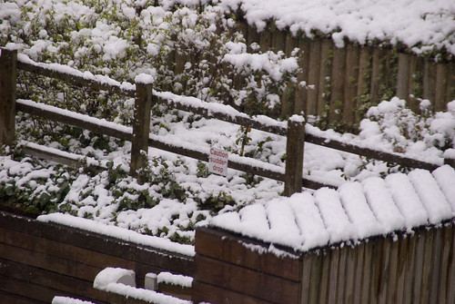 A sudden drop in snow!