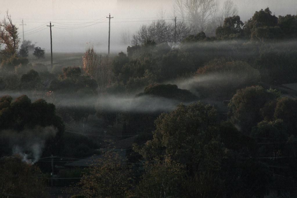 Kaleen Fog