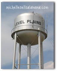Level Plains Alabama Water Tower
