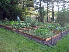 garden view late spring