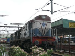 P1130015