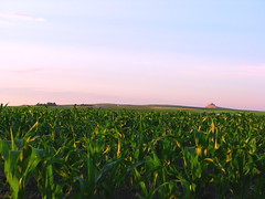 Knee High By The 4th Of July? (Nature_Deb) Tags: morning blue summer sky green nature sunrise landscape cornfield farm country hills kneehigh mywinners