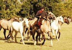 Lobunos y blancos (Eduardo Amorim) Tags: horses horse southamerica argentina criollo caballo cheval caballos cavalos pferde herd cavalli cavallo cavalo gauchos pferd pampa hest hevonen chevaux gaucho  amricadosul hst gacho  campero amriquedusud provinciadebuenosaires  gachos  sudamrica sanantoniodeareco suramrica amricadelsur  areco sdamerika gregge crioulo troupeau caballoscriollos herde criollos  tropillas  pampaargentina camperos americadelsud tropilhas tropilla  crioulos cavalocrioulo americameridionale tropilha caballocriollo campeiros campeiro eduardoamorim cavaloscrioulos pampaargentino