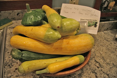 squash give away