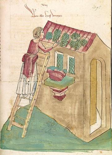 12- fol. 293r - Secando hierbas medicinales en el tejado