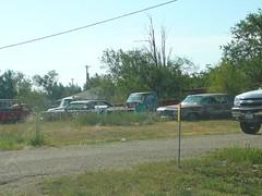 Abandoned Cars in Bushland (alist) Tags: move alist robison alicerobison ajrobison