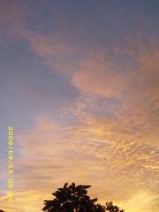 sky (intro2natura) Tags: orange dusk shades eveningsky seasky naturesart skyart