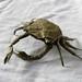 crab de Brian Chan