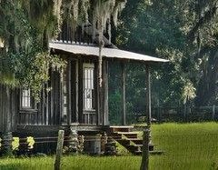 rural florida - sharecropper's shack (joiseyshowaa) Tags: travel history rural cycling cabin tour florida farm great shed gainesville historic depression shack fl farmer economic fla share levy shilo micanopy alachua cropper sharecropper thechallengefactory joiseyshowaa joiseyshowa
