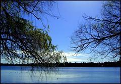 lakeside (babel2006) Tags: potofgold
