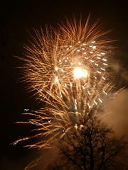 Vale fireworks 2008