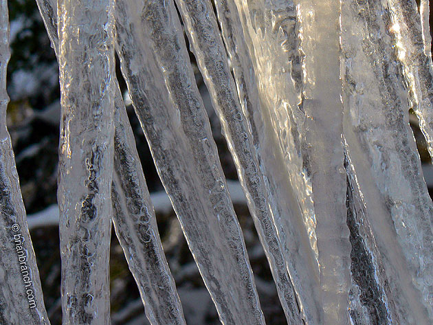 P1220382_icicle
