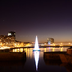 Limerick_2008_Christmas_Tree.jpg