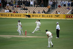 Flying - Brett Lee, Adelaide _2681