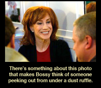 dust-ruffle-kathy-griffin-hair