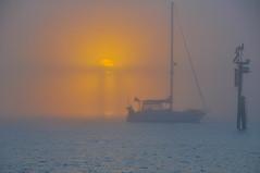 Check Out The Foggy Sunset (MarkReqs) Tags: bridge sunset mist sc fog sailboat marina foggy charleston