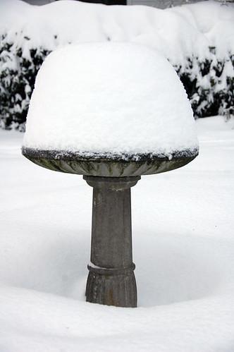 Birdbath (with MORE Snow)
