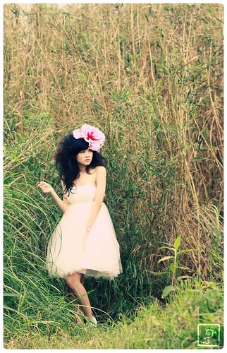 ~ dreamy wander #2 ~