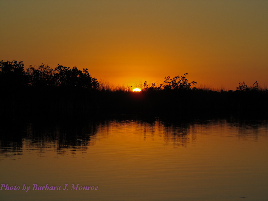 Everglades National Park-Kayaking (10 of 19)