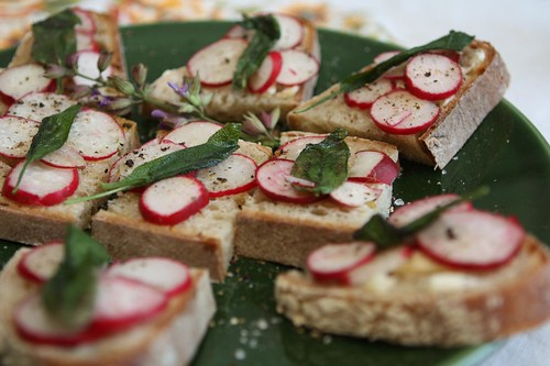 Radishes with Butter and Fried Sage Leaves on Bread