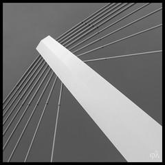L'architecture est art de suggestion (Tentei) Tags: bridge architecture pont suspensionbridge artisticphotography chainbridge blackanwhite blancetnoir canon500d creativephoto pontsuspendu photoartistique photocréative