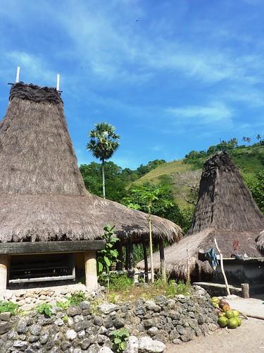 Sumba ouest-Praigoli-Village (4)