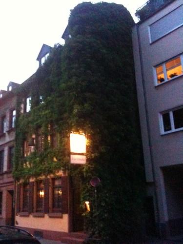 <span>francoforte</span>Natura VS uomo, parte seconda<br><br><p class='tag'>tag:<br/>francoforte | luoghi | cultura | </p>