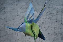 colibri (Sergio.A.Spinolo) Tags: sergio origami hummingbird colibri spinolo papiriflexia