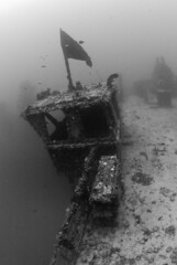 DSC_4384 (george.bouloukos) Tags: keys divers florida grove spiegel scuba diving shipwreck